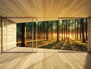 Fototapet 3D pădure văzută de pe terasă - 3307