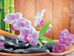 Tapet zen cu orhidee violet -115