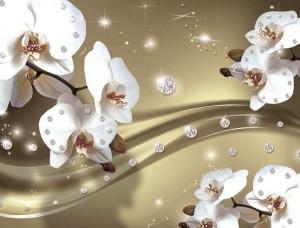 Fototapet orhidee - 2314