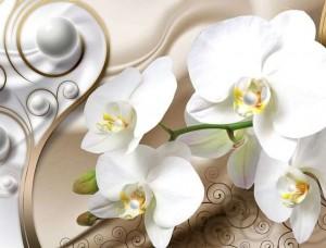 Fototapet artistic orhidee albe - 2952