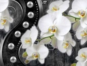 Tapet mural cu orhidee - 2973