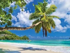 Fototapet hamac agăţat de palmier pe o plajă paradisiacă - 10332