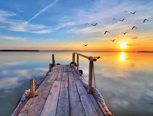 Mic chei liniştit la apus de soare - 11619