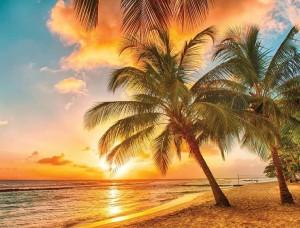 Tapet mural relaxant, palmieri pe plajă la apus - 3393