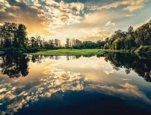 Fototapet liniştitor, reflexia pădurii într-un lac - 12024