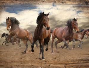 Tapet cai galopând - 10083