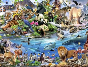 Tapet pentru copii animale de pe continente - 12843