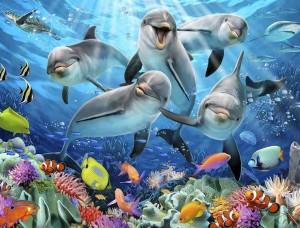 Delfini zâmbind, tapet pentru copii - 12849